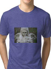 STONE WINGS Tri-blend T-Shirt