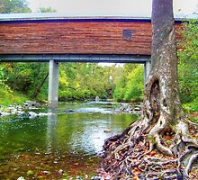 Old Tree And The Covered Bridge by James Brotherton