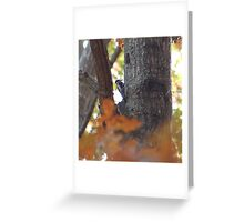 Front Yard Guest Greeting Card