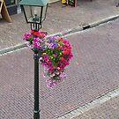 Wijk in flowers by Hans Bax