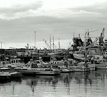 Harbor by hallimar