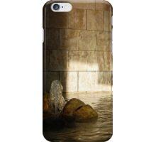 Zen iPhone Case/Skin