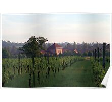 Denbies Wine Estate First Light Poster