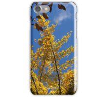 golden gingko iPhone Case/Skin