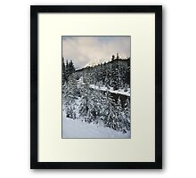 Unknown Mountain, Jasper National Park Framed Print