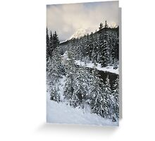 Unknown Mountain, Jasper National Park Greeting Card