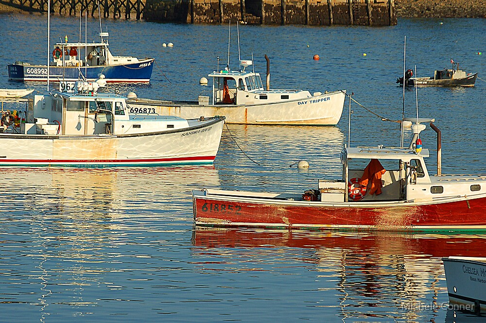 Maine Harbor by Michele Conner