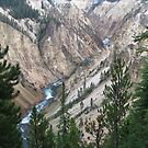 Grand canyon in Yellowstone  by Charlotte Koop