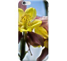 Columbine Flower iPhone Case/Skin