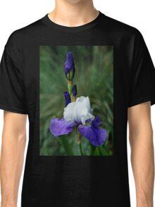 Iris Blues Classic T-Shirt