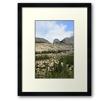 Jasper Pines Framed Print