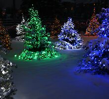 Electric Winter Wonderland by Adam Bykowski