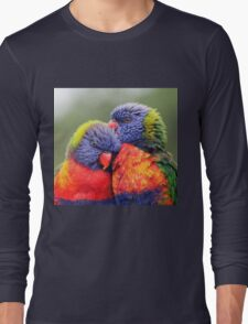 Canoodling in the Mist Long Sleeve T-Shirt