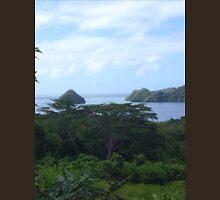 a desolate Palau landscape Unisex T-Shirt