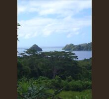 a desolate Palau landscape T-Shirt