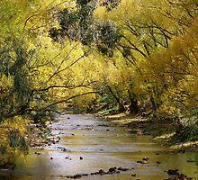 riverside by autumn by cheza77