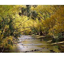 riverside by autumn Photographic Print