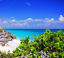 tulum ruins by joel Durbridge