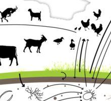 Bali Food Web Sticker