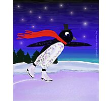 Skating Penguin Photographic Print