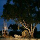 Aussie Morning by Arthur Koole