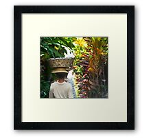 daily grind in paradise Framed Print