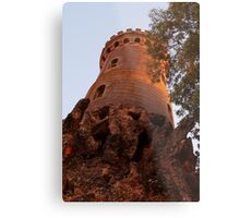 The princess is in the highest tower Metal Print