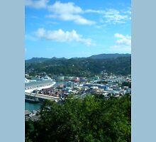 a desolate Saint Kitts and Nevis landscape T-Shirt