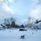 Suburban Winter 2009 by Jeff stroud