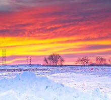 Snow Covered Sunrise by Nicholas Stankus