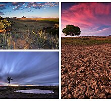 Karoo Collage by Rob  Southey