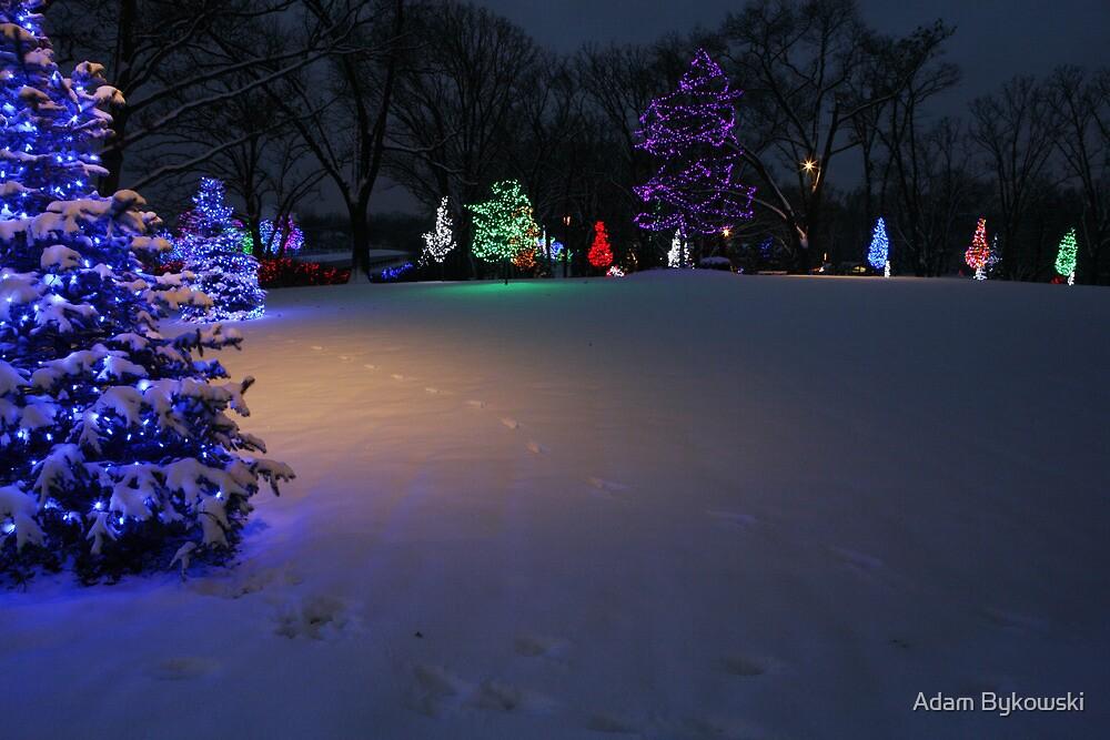 Christmas Glow by Adam Bykowski
