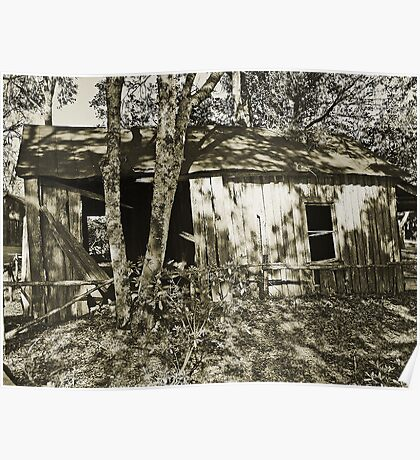 mid 1800s slave house (side view) Poster
