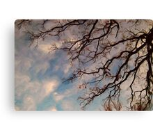Oak Branch Reminiscent of the Old Masters Canvas Print