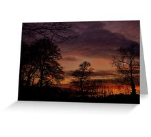 Winter sunset. Greeting Card