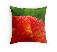 Red Brazilian Flower after Rain Throw Pillow