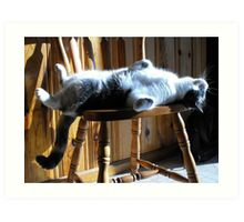 How To Sunbath In A Chair, By Farva Art Print