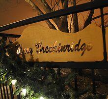 Mary Breckinridge by Ann Eldridge