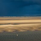 Stormy Weather by Mike Paget