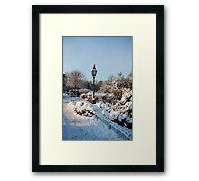 Garden in winter Framed Print