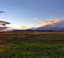 Barley Sunset by Rob  Southey