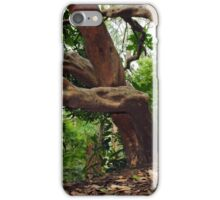 Gnarled branches iPhone Case/Skin