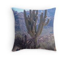 Silent Guardian ~ Saguaro National Park East  Throw Pillow