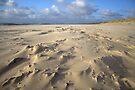 Natural Beach Art by Jo Nijenhuis