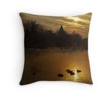 Warming ducks Throw Pillow
