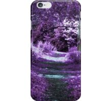 Enchantment Way iPhone Case/Skin
