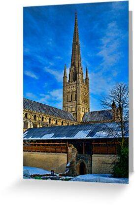 Norwich Cathedral, East Anglia, UK by Mark Snelling