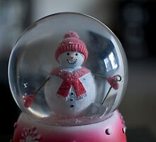 Snowman Globe  by rjhphoto