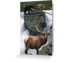 Encounter at the Falls Greeting Card