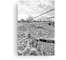 Fence Lines Canvas Print